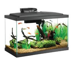Aqueon Aquarium Fish Tank Starter Kit with LED Lighting, 20