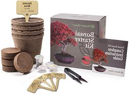 Planters' Choice Bonsai Starter Kit - The Complete Kit to Ea