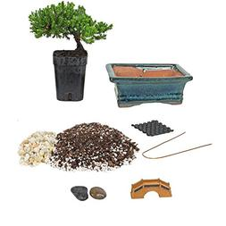 Bonsai Tree Starter Kit, Complete Do-It-Yourself Kit with 2