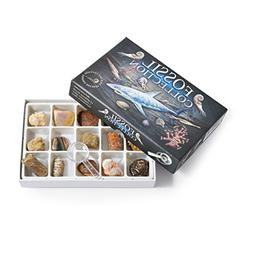 Fossil Collection Kit - Contains 15 Genuine Fossils! Pack of