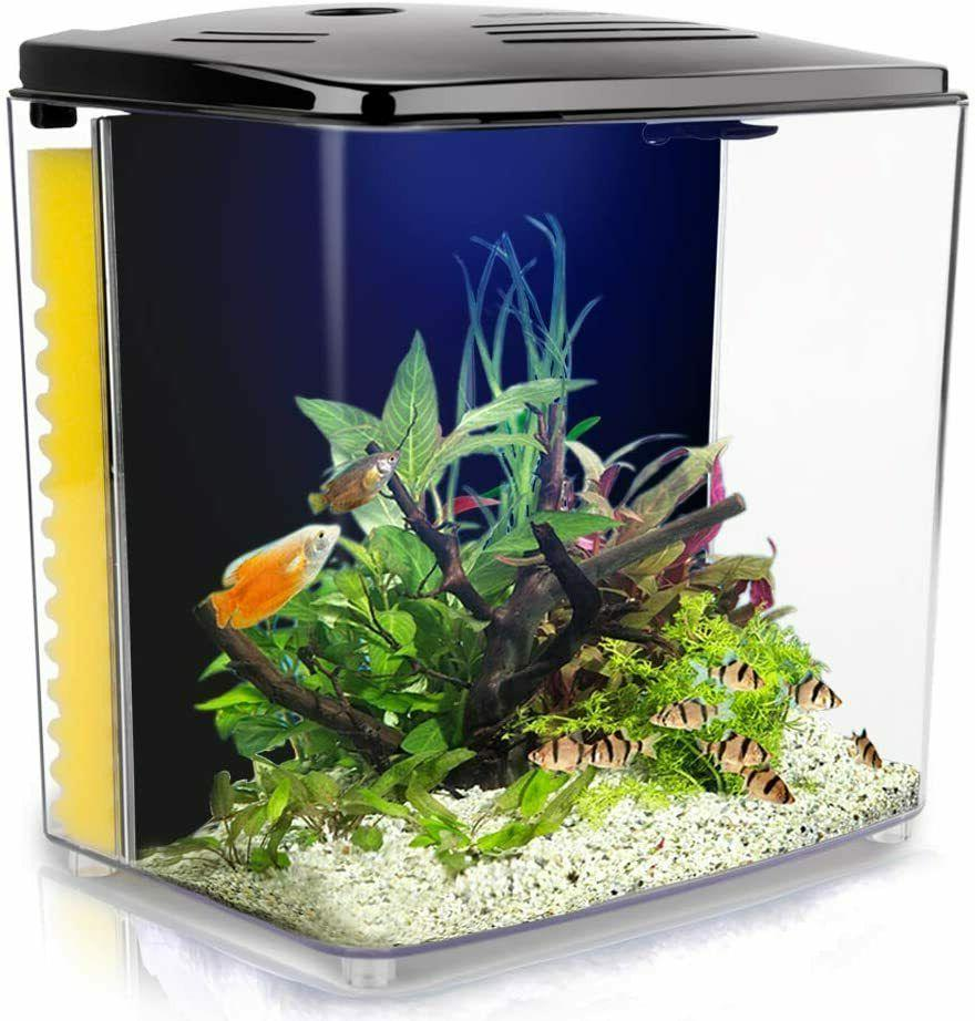 1 4 gallon betta aquarium starter kits