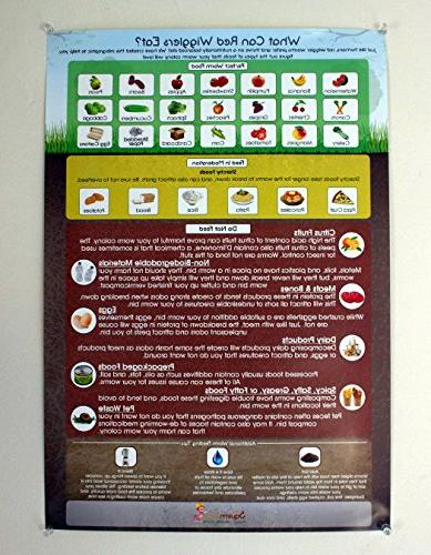 """Eat?"""" for Worm Composting Bins An to Any Farm Starter Kit"""